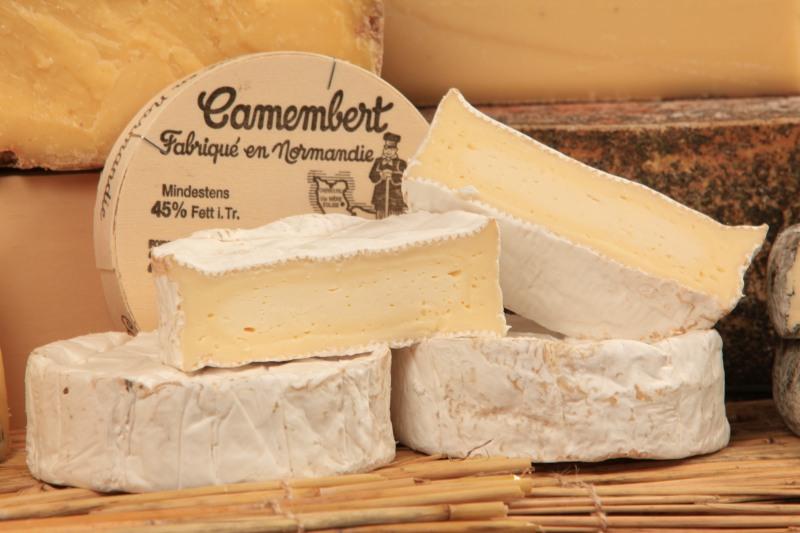queso 2