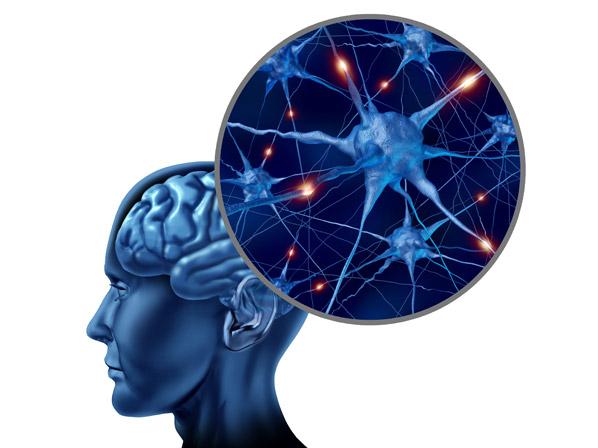inteligencia 3